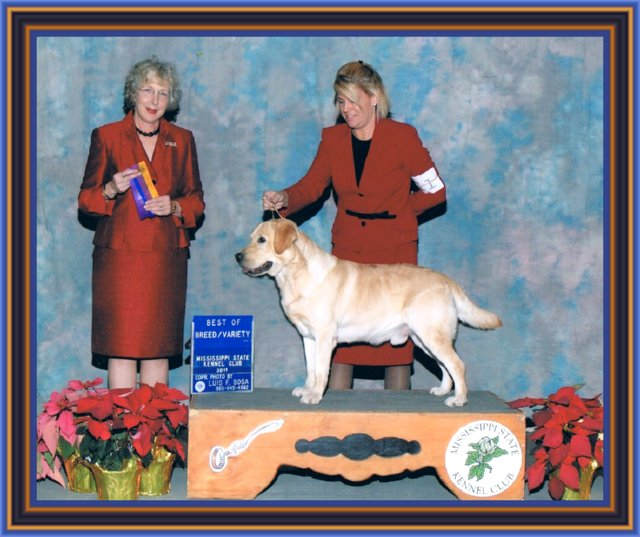 best of breed pic